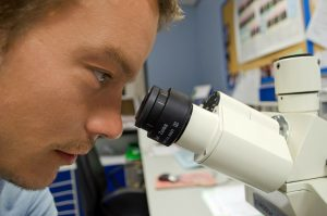 Man using microscope to represent content audit.