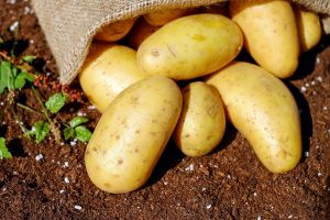 Image of potatoes.